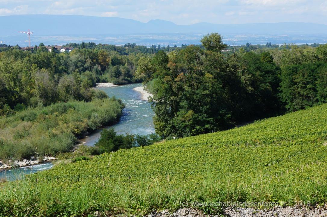 Sentier Pont de Vigne